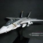 Sky Striker Ver Nath 18