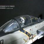 Sky Striker Ver Nath 21