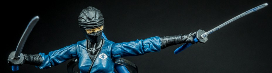 001 GIJOE FSS 3 Vypra Cobra Ninja